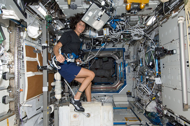 What happens to the human body during spaceflight?